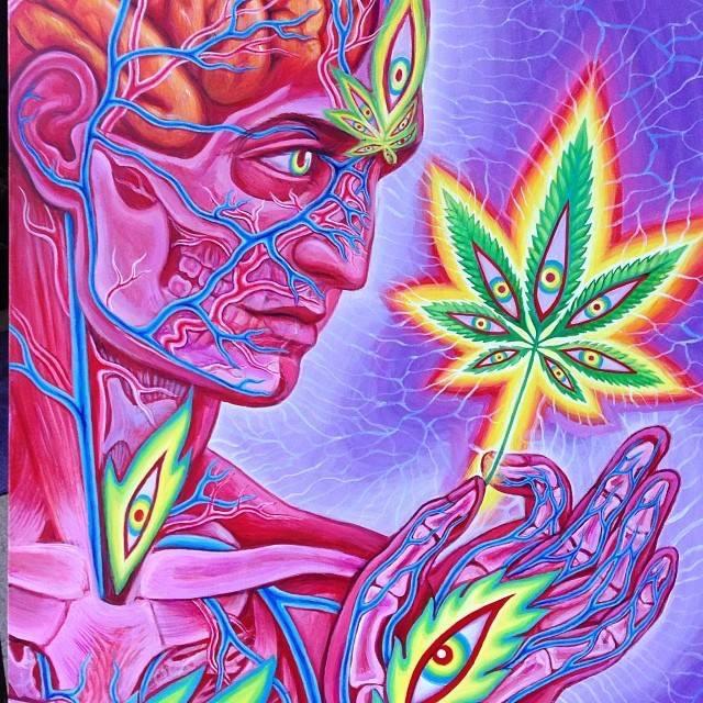 Alex Grey Psychadellic Cannabis