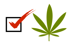 2016 candidates views on marijuana