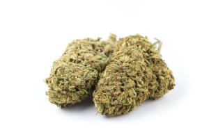 Charlottes Web Cannabis Strain