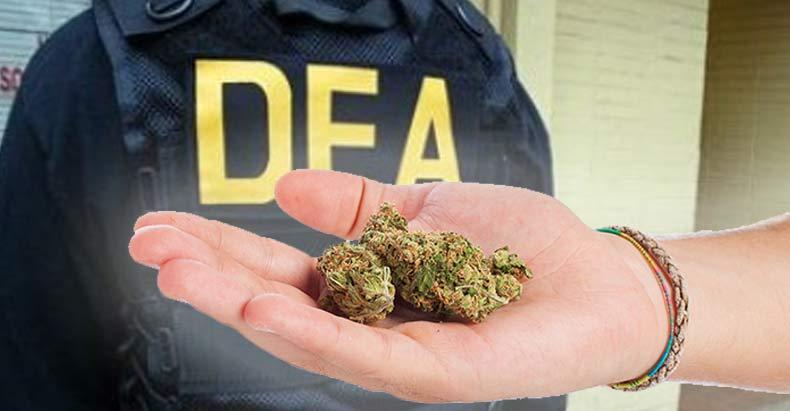 DEA-Responds-Chief's-Comments-That-Medical-Marijuana-is-a-Joke