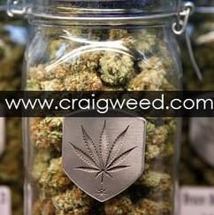 Craig Weed