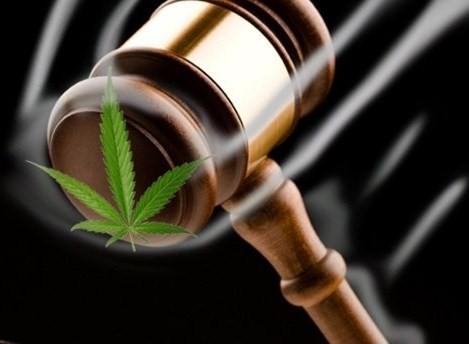 cbd oil legal in 50 states