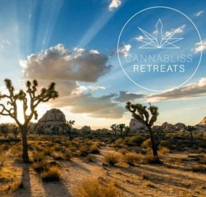 september cannabis events