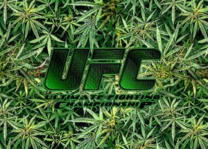 UFC cannabis sports