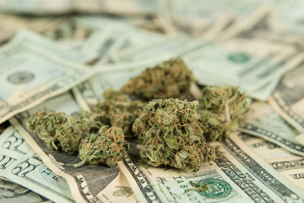 price of cannabis cultivation soars